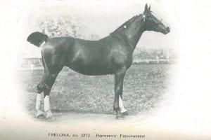 FRELONA 3272